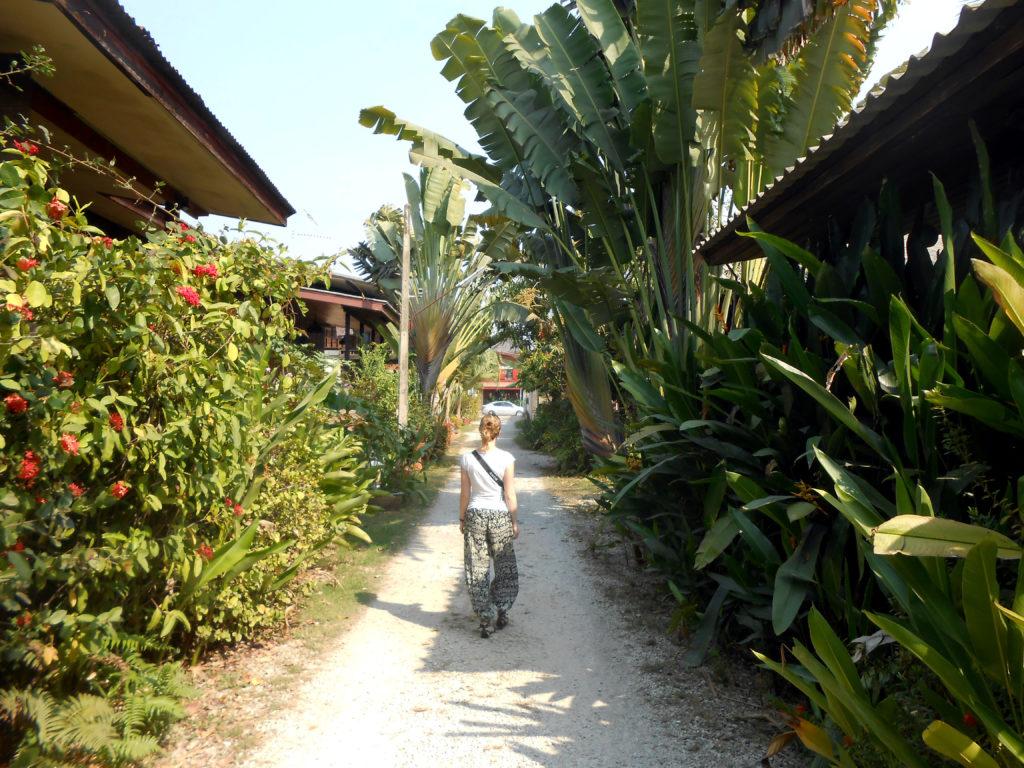 Lotus Village